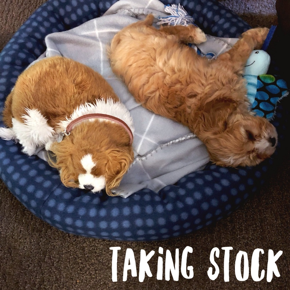 taking stock september 2019