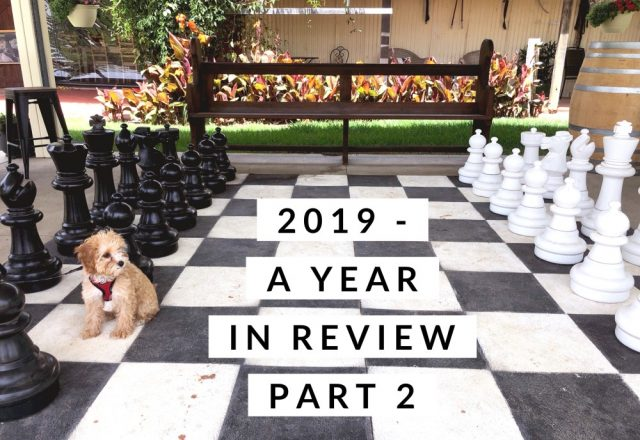 2019 – A Year in Review Part 2