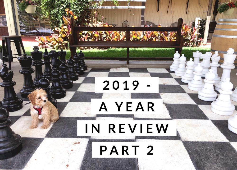 2019 year in review part 2