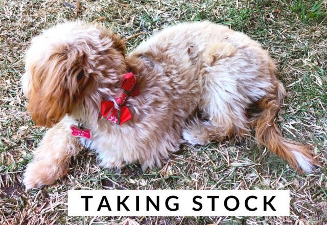 Taking Stock – December 2019