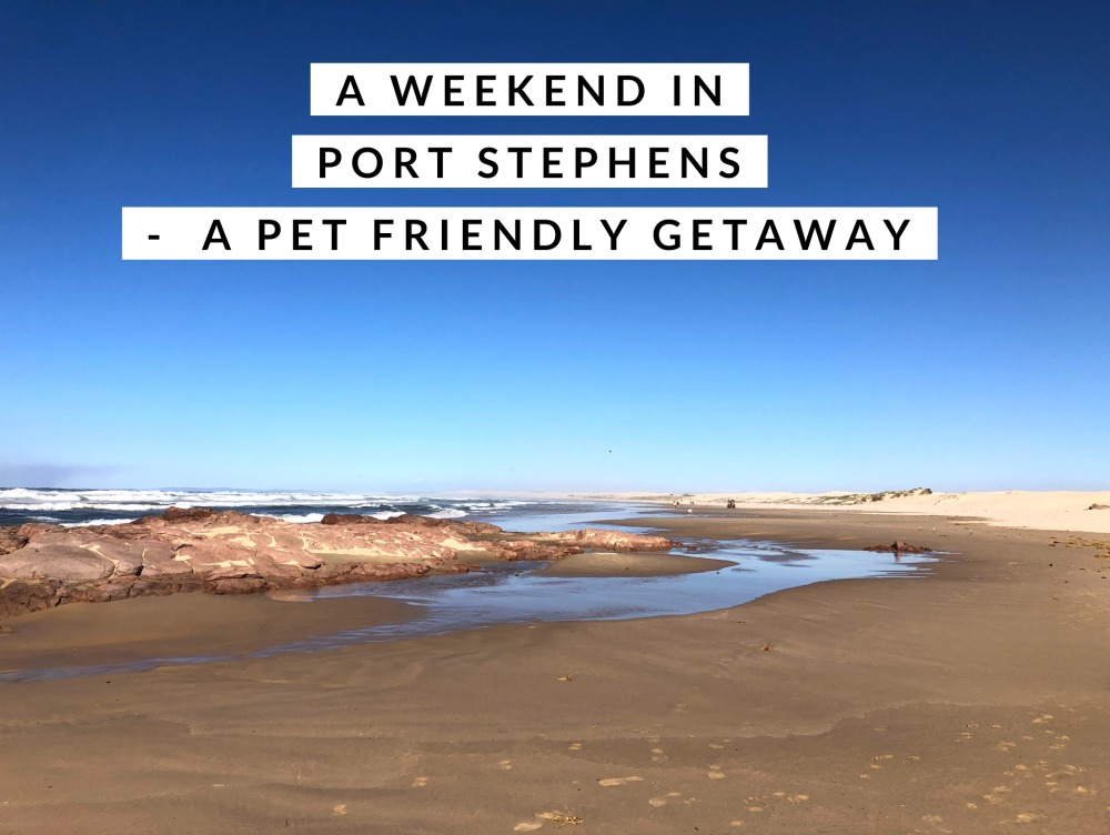 weekend port stephens pet friendly