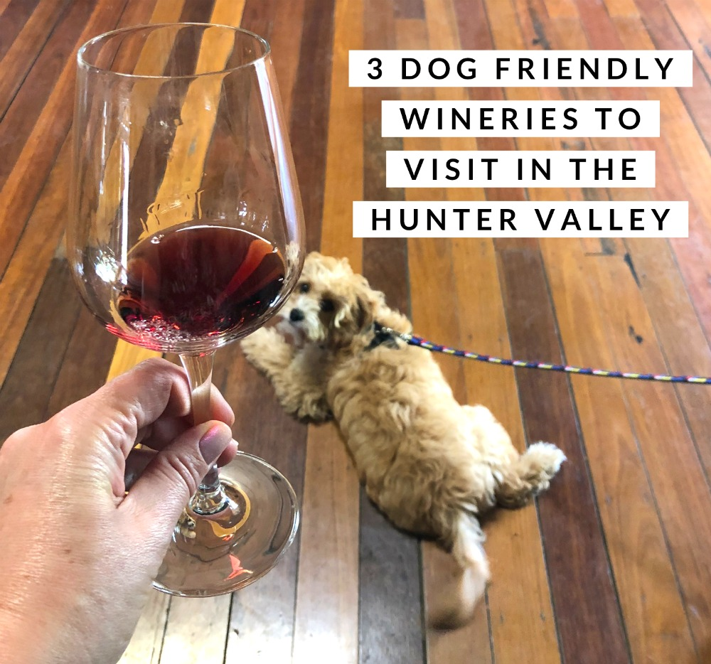 dog friendly wineries hunter valley