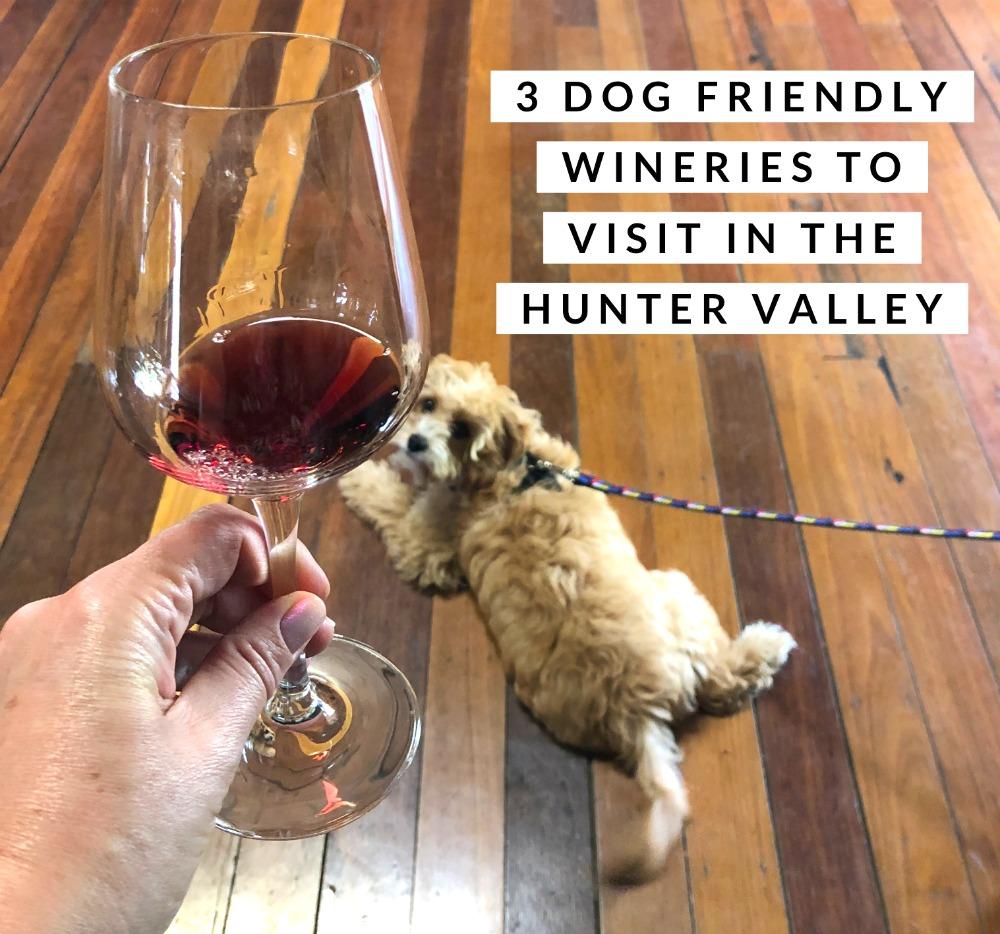 dog friendly wineries hunter valley