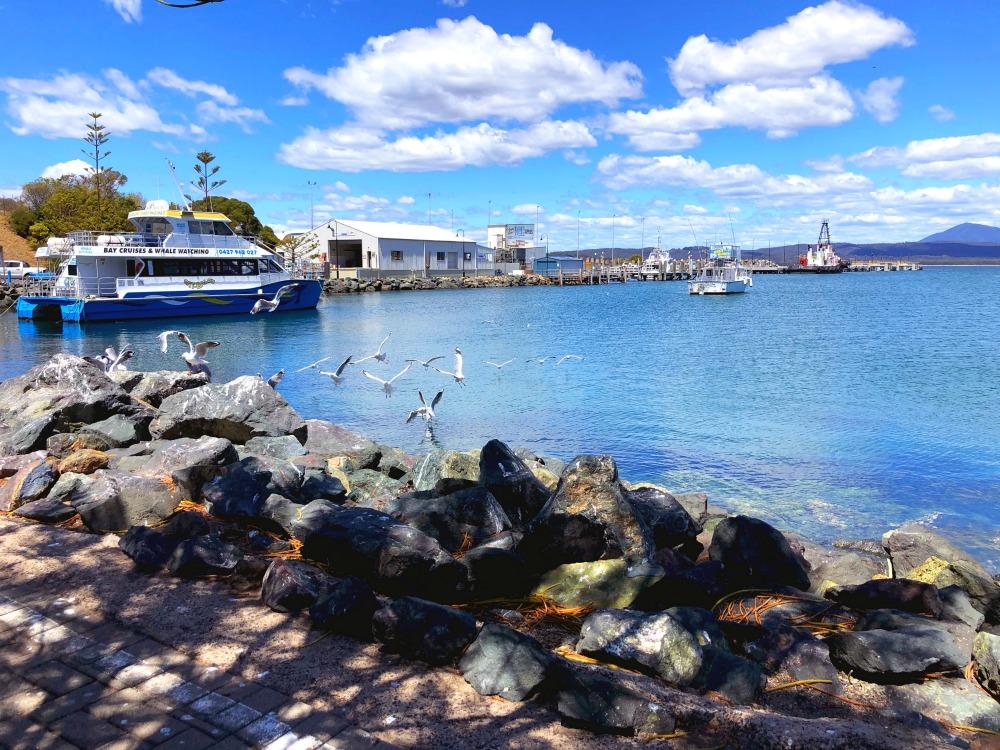 eden wharf