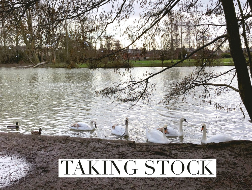 taking_stock_february_2020_swans_on_lake