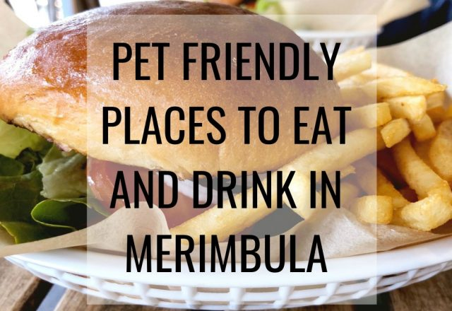 Pet Friendly Places to Eat and Drink in Merimbula