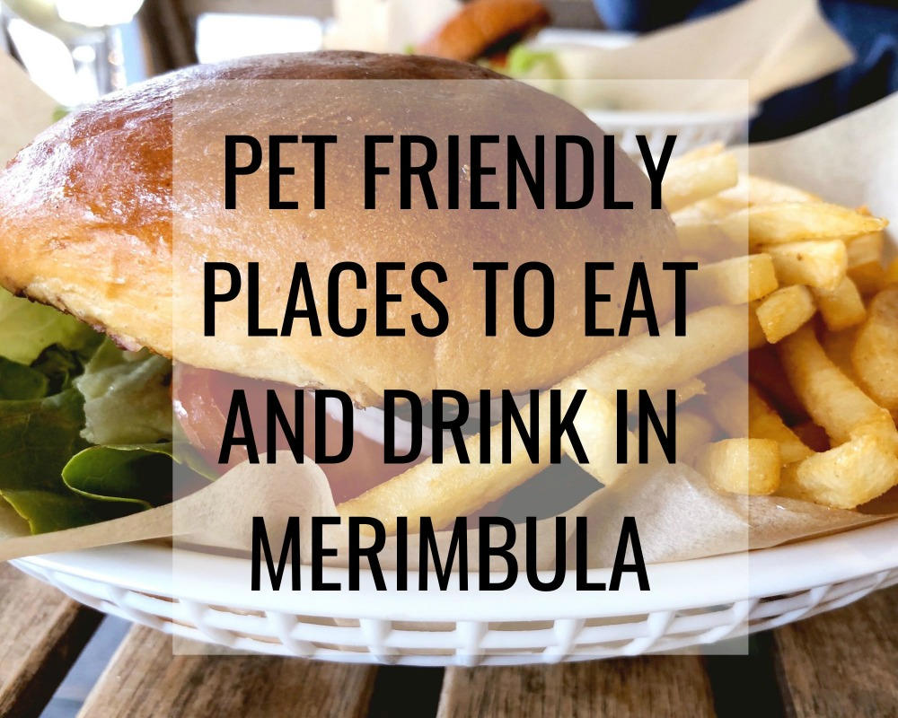 pet friendly places to eat drink merimbula