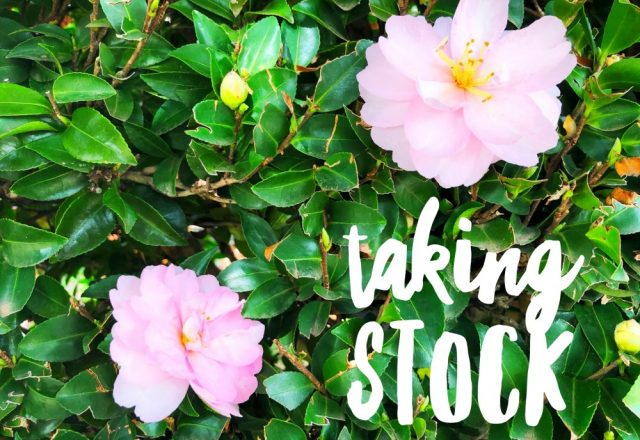 Taking Stock – April 2020