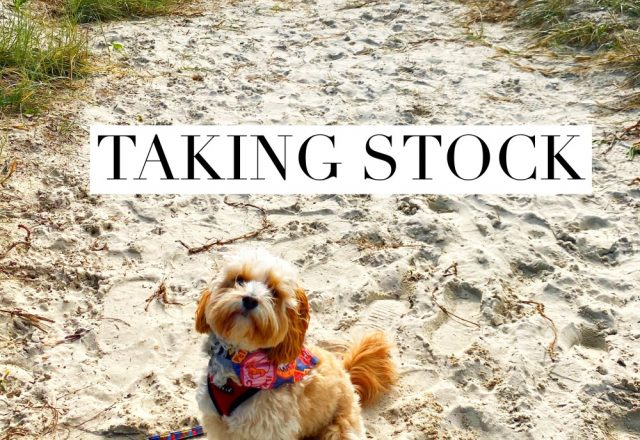 Taking Stock – June 2020