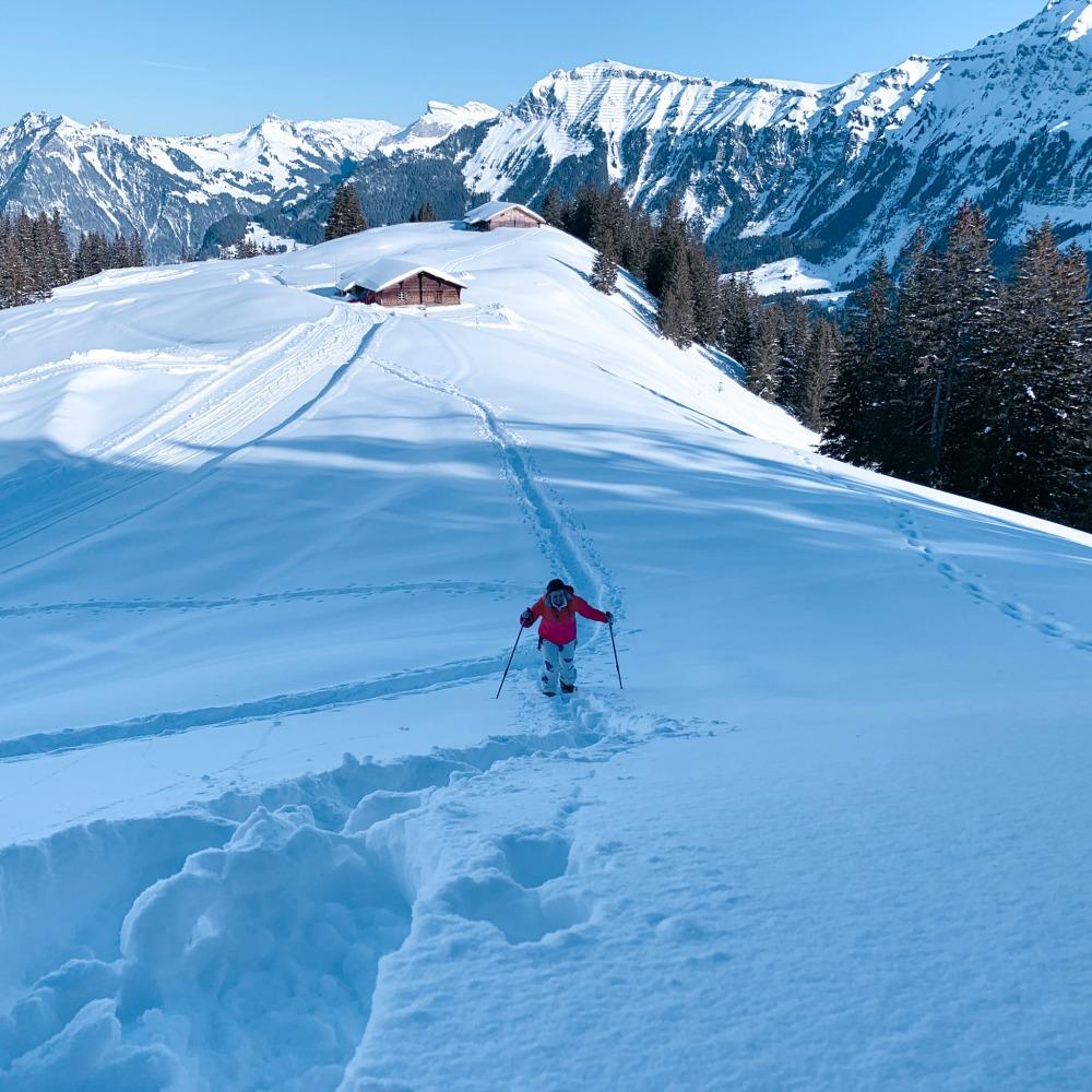 Lisa Dickenson skiing