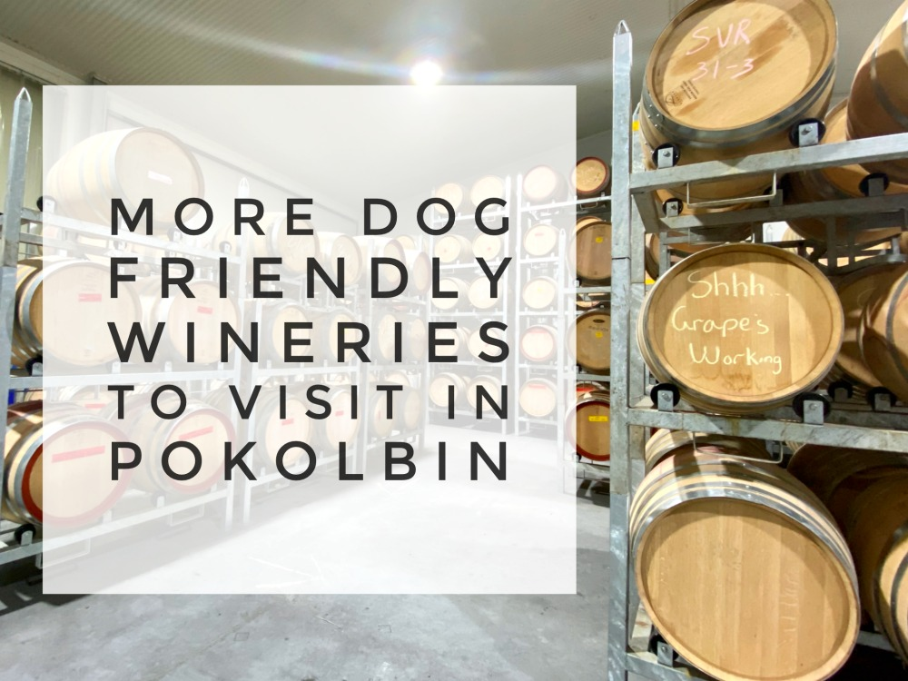 barrels in piggs peake winery