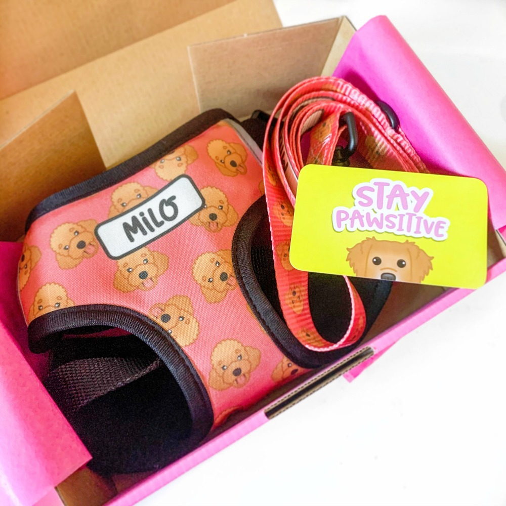 zoopeez personalised harness