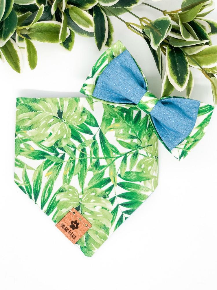 dog bandana and bow tie