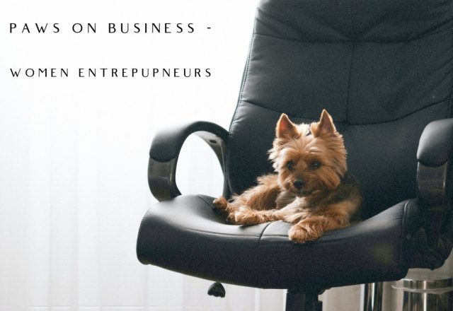 Paws on Business: Women Entrepupneurs – Part 3