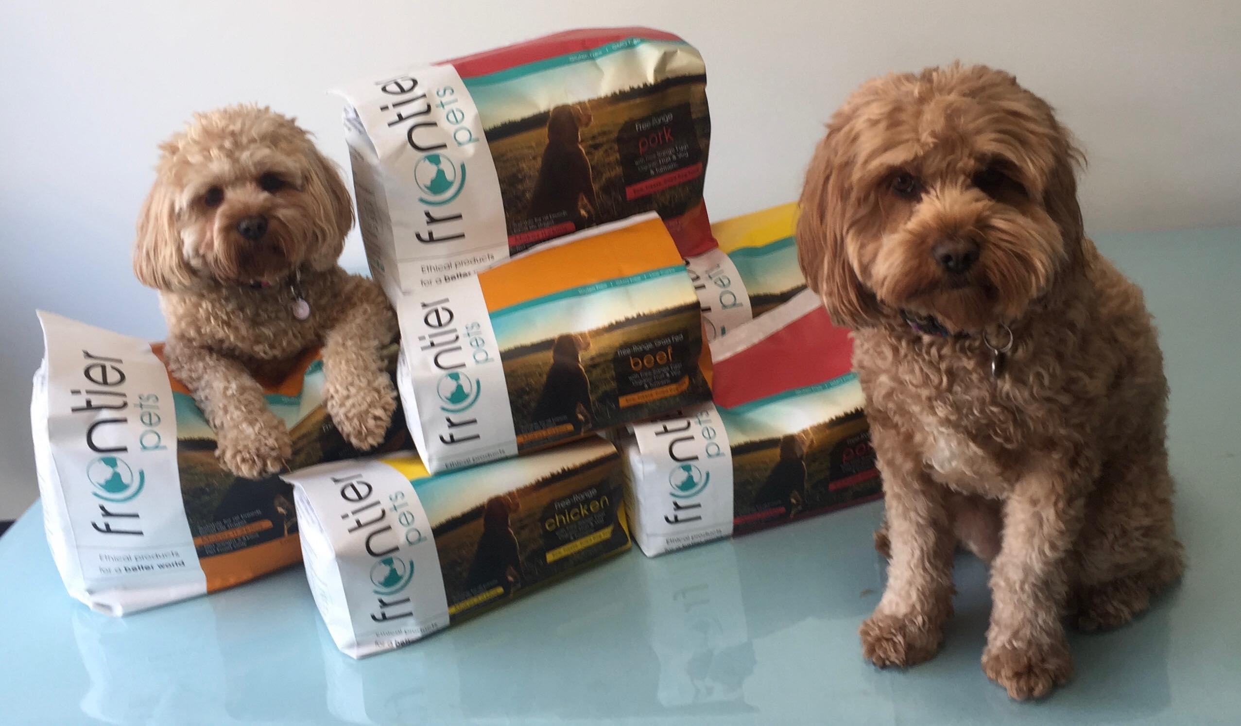 two cavoodles sitting next to a packets of frontier pet food