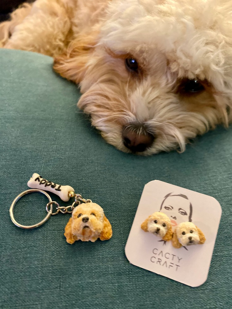 dog looking at cacty craft earrings and key chain