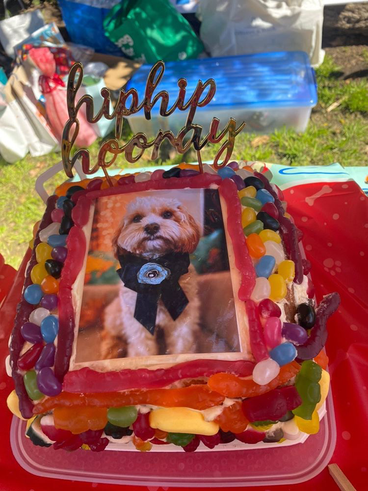 birthday cake covered in candy with a photo of a dog