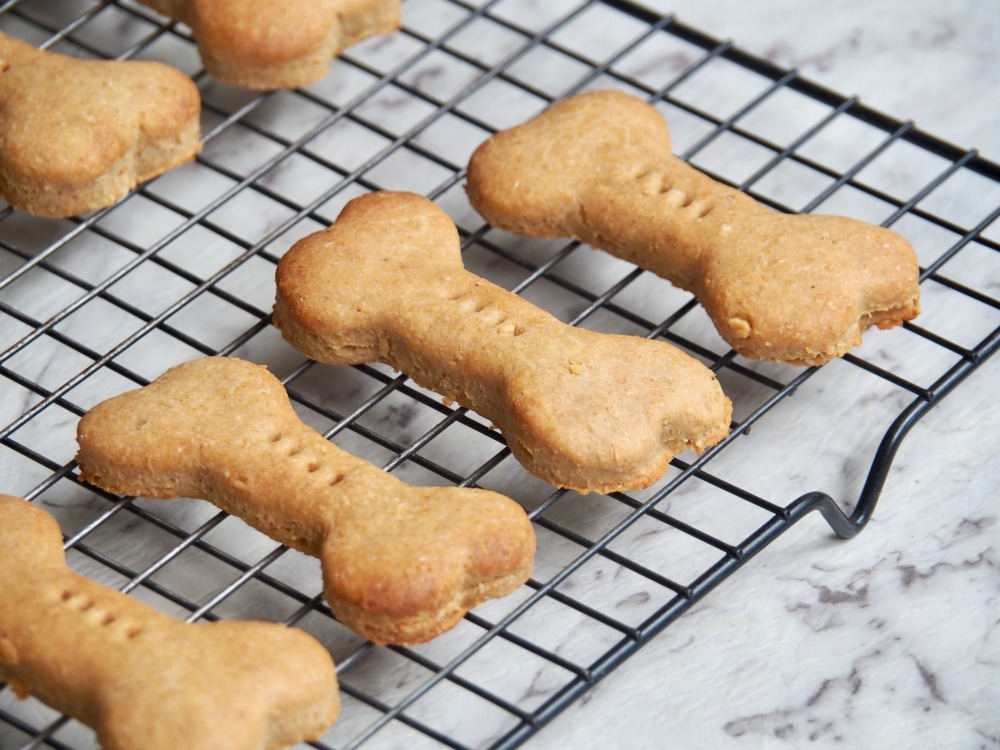 close up of peanut butter dog biscuits on cooling rack