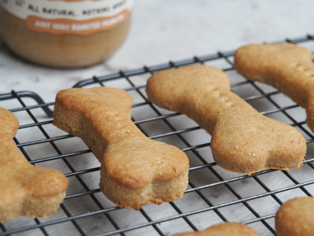 close up of peanut butter dog biscuits