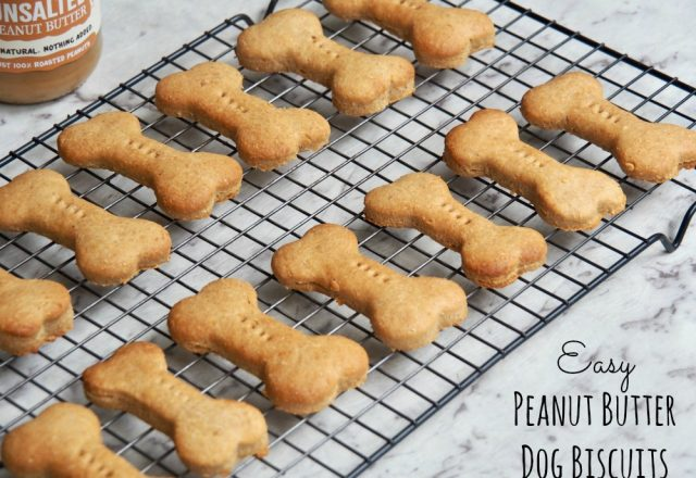 Easy Peanut Butter Dog Biscuits
