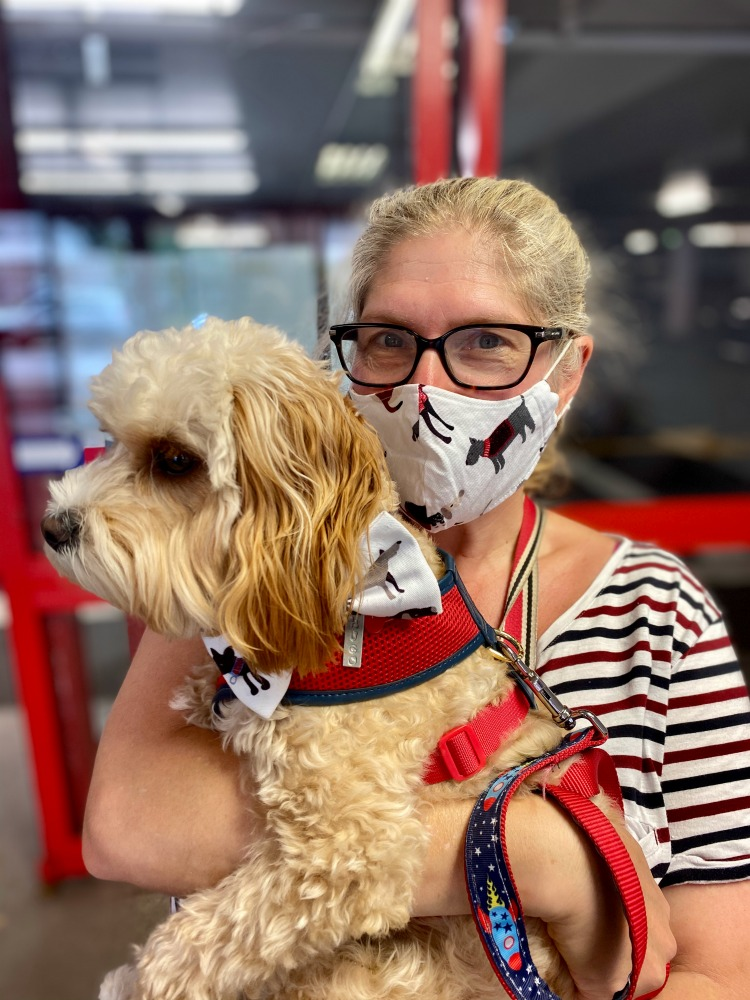 woman holding dog wearing matching face mask and bow tie