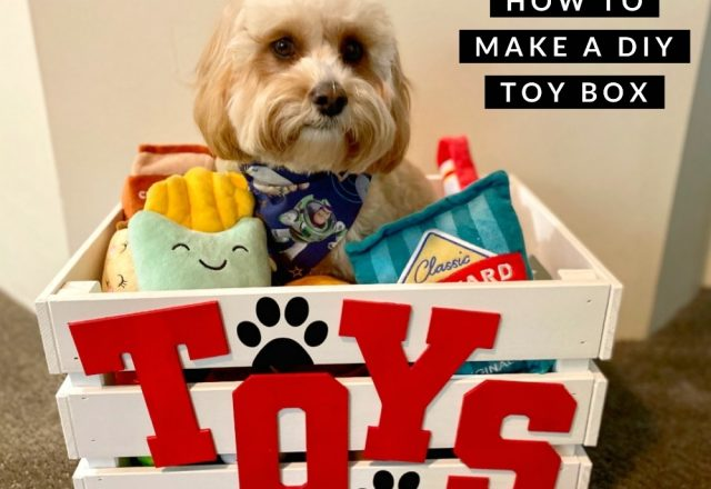 DIY How to make a dog toy box