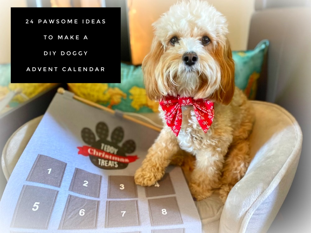 dog with paw on cloth advent calendar