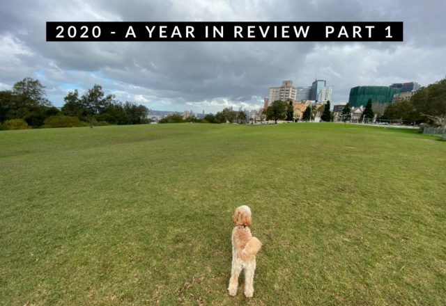 2020 – A Year in Review Part 1