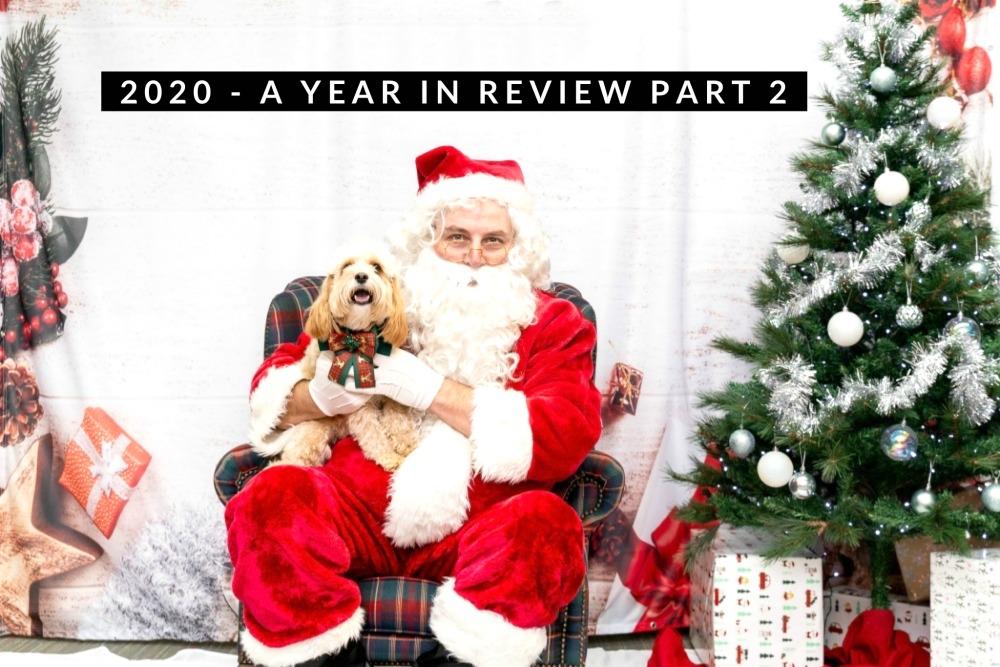 cavoodle sitting on Santas lap