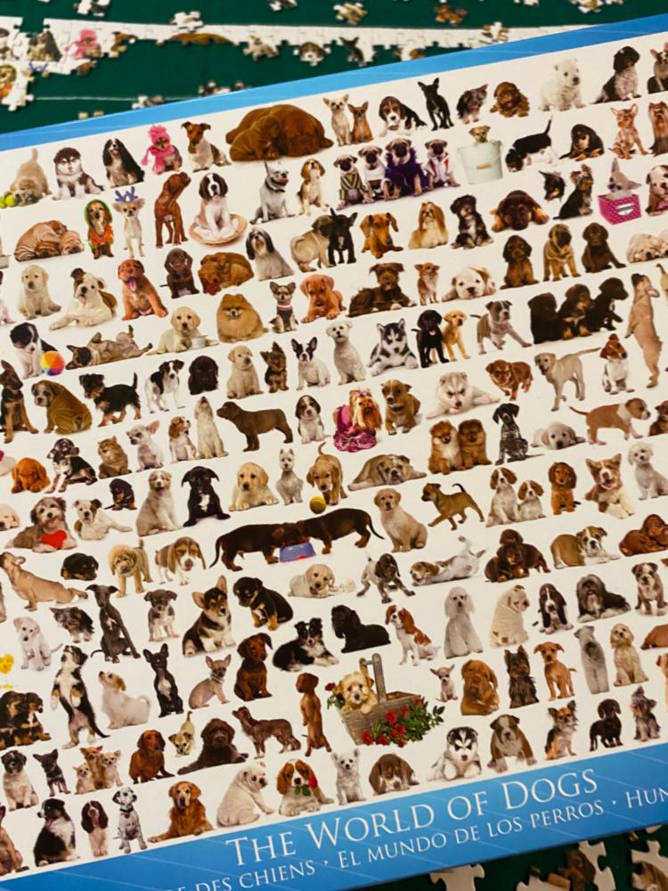 dog breeds puzzle