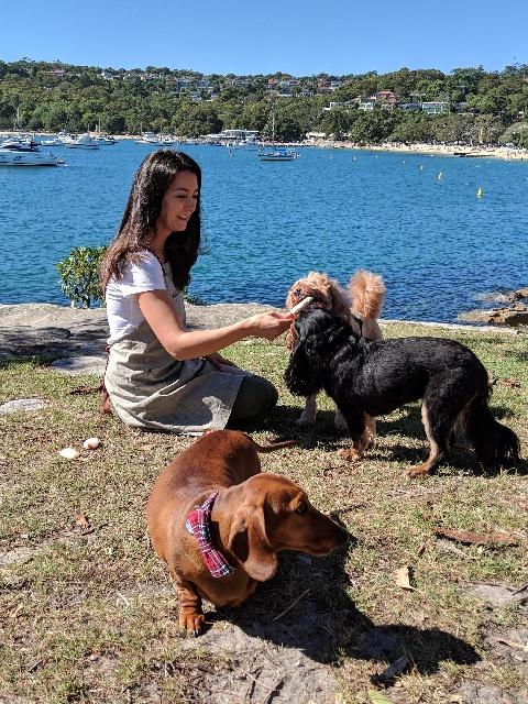 woman sitting on beach feeding dogs
