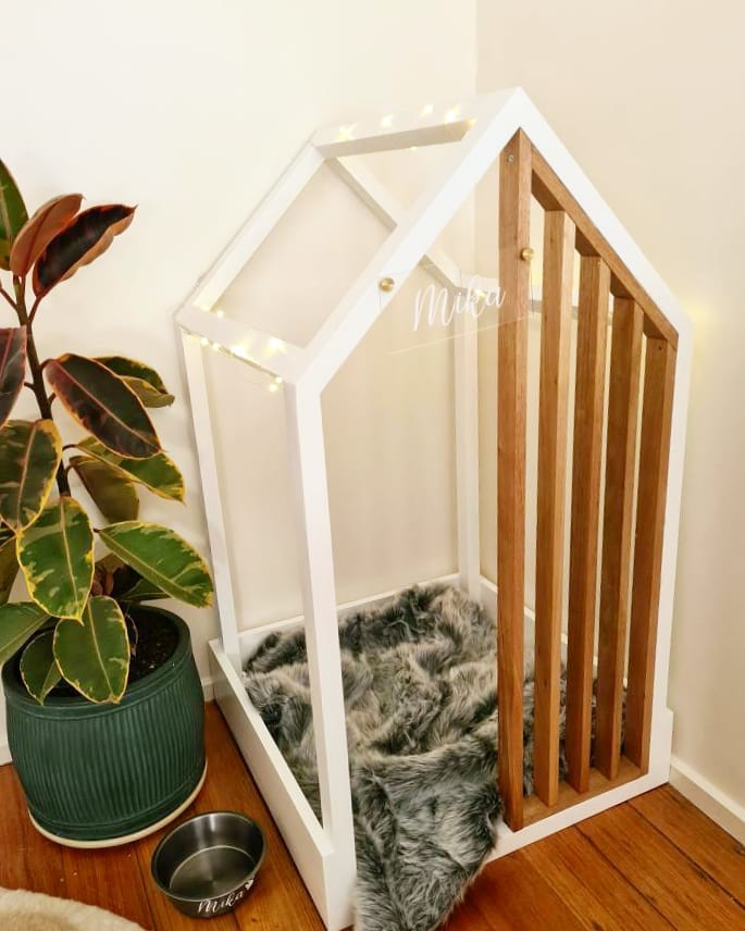 indoor dog house made of glass