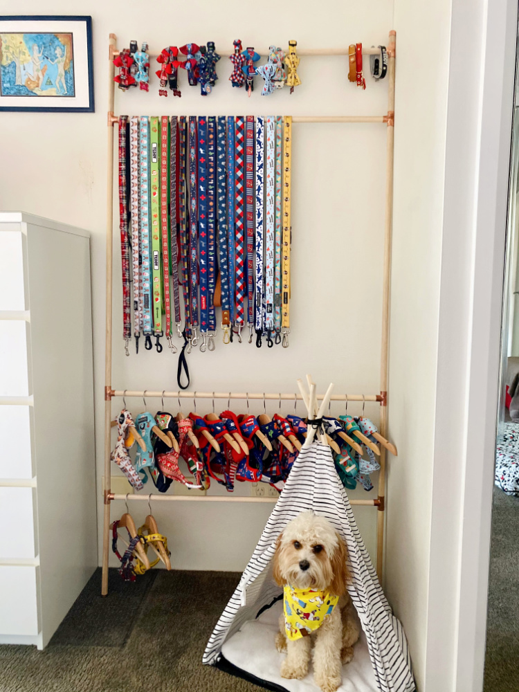 cavoodle sitting a teepee by a dog accessory storage ladder