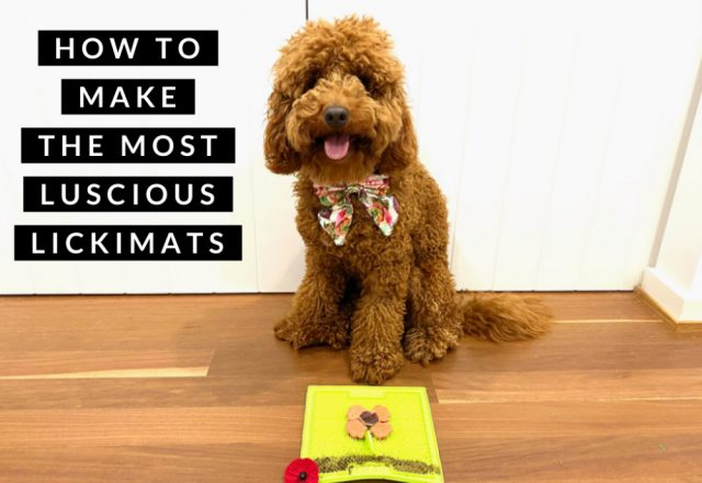 How to Make the Most Luscious Lickimats