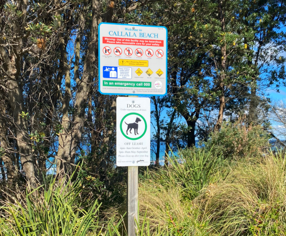sign outlining dog rules at beach