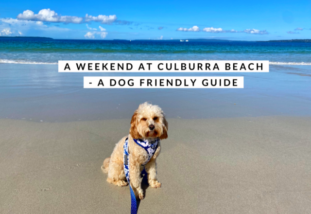 A Weekend in Culburra, NSW – A Dog Friendly Guide