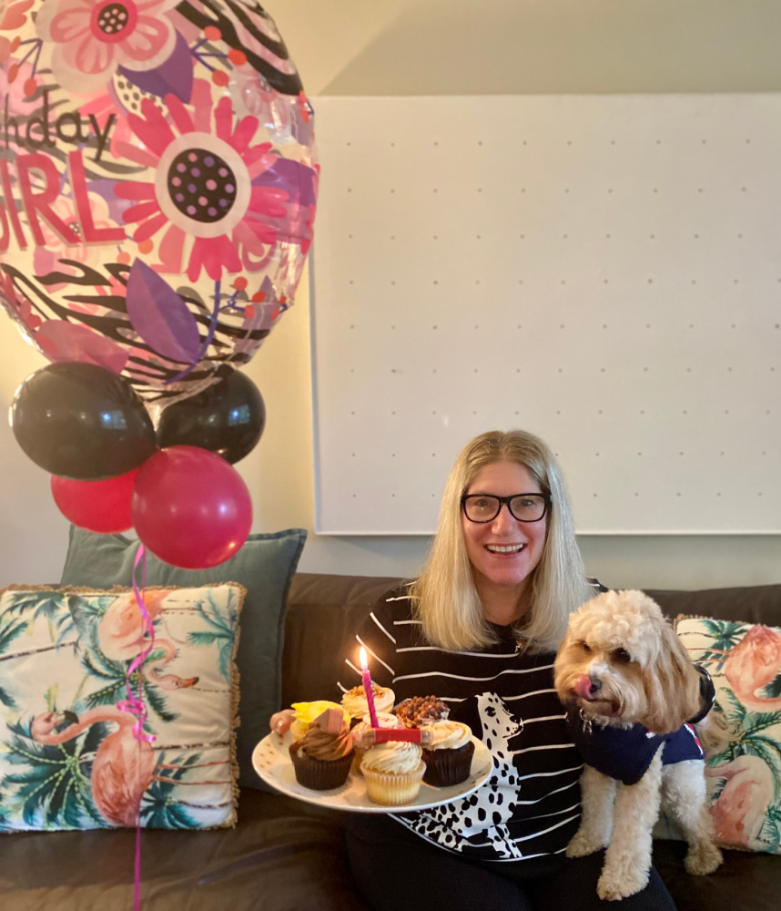 woman holding a plate of cupcakes cuddling a small cavapoo