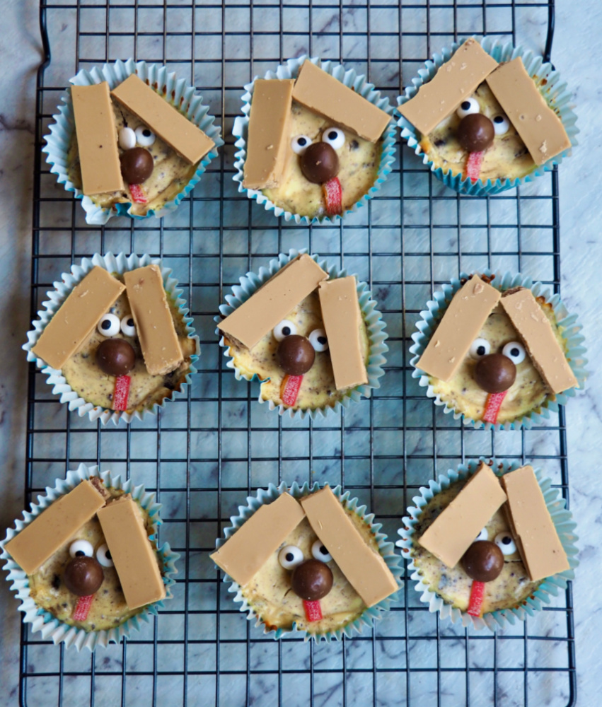 mini cheesecakes decorated with kitkats to look like dogs